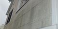 症状 屋根・外壁のカビ